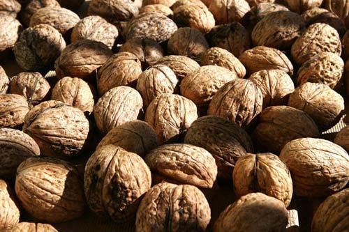 10 Loại hạt mẹ bầu nên ăn để giúp con thông minh và phát triển sau này 8
