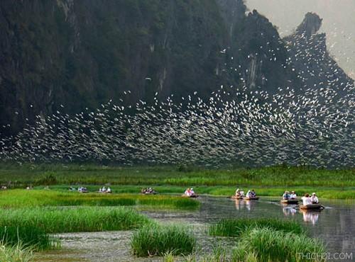 Top 10 địa điểm du lịch hấp dẫn khi đến Ninh Bình 8
