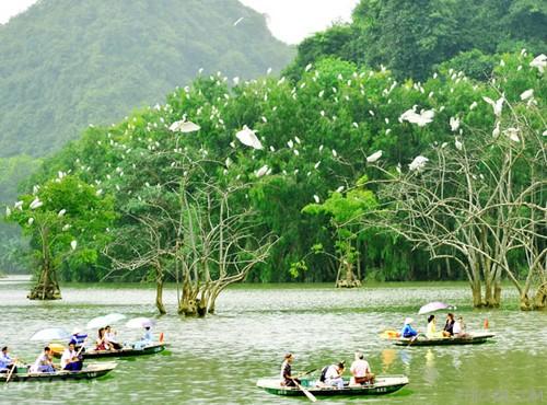 Top 10 địa điểm du lịch hấp dẫn khi đến Ninh Bình 9