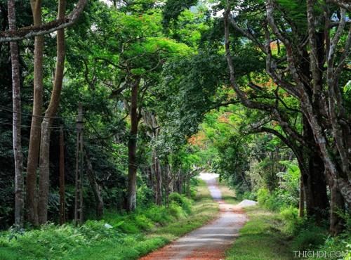 Top 10 địa điểm du lịch hấp dẫn khi đến Ninh Bình 10