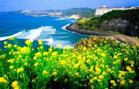 Top 10 địa điểm hot nhất ở Hàn Quốc nên thử cho hè này 3