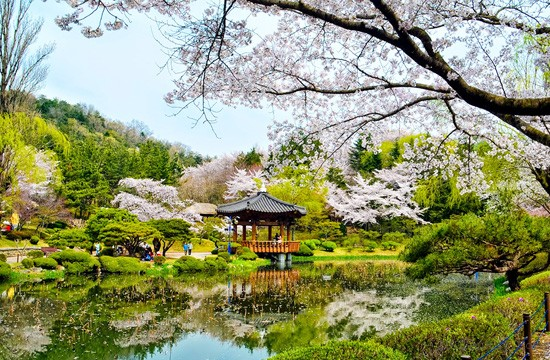 Top 10 địa điểm hot nhất ở Hàn Quốc nên thử cho hè này 4
