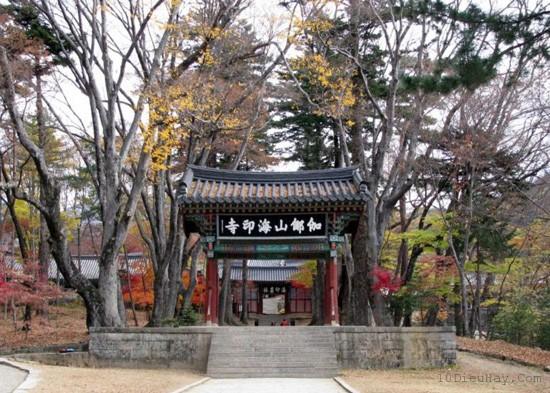 Top 10 địa điểm hot nhất ở Hàn Quốc nên thử cho hè này