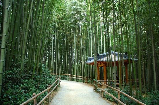 Top 10 địa điểm hot nhất ở Hàn Quốc nên thử cho hè này 9