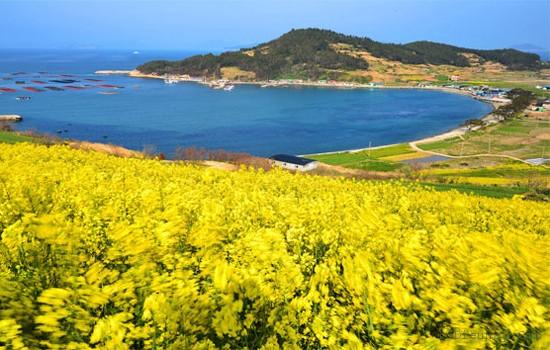 Top 10 địa điểm hot nhất ở Hàn Quốc nên thử cho hè này 10