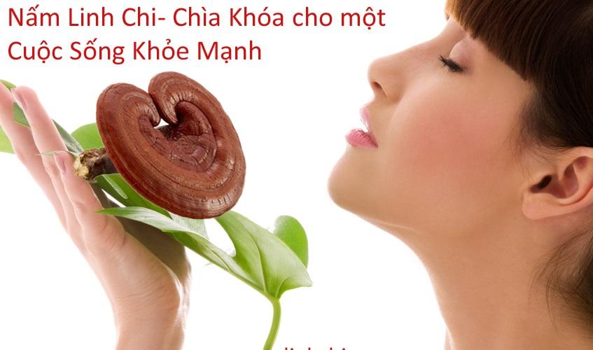 10 công dụng tuyệt vời lợi ích của nấm linh chi đối với sức khỏe con người 4