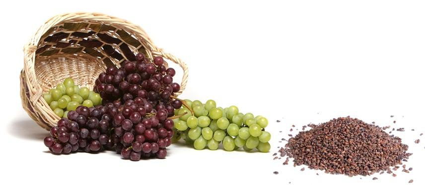 Top 10 loại hạt ngon và giàu chất dinh dưỡng tốt cho sức khỏe bạn nên dùng hằng ngày 3