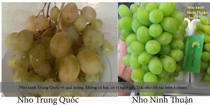 Cách nhận dạng 10 loại trái cây tiêm thuốc tăng trưởng đến từ Trung Quốc và trái cây sạch ở Việt Nam