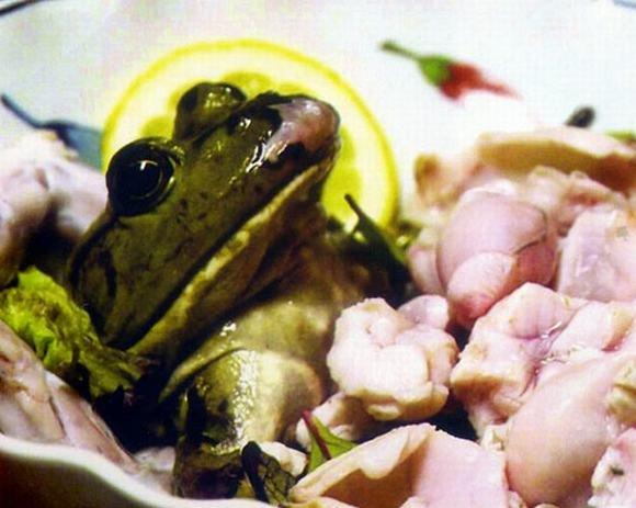 10 món ăn truyền thống kinh dị, khủng khiếp lạ lùng nổi tiếng khắp thế giới 8