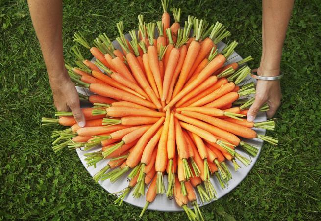 Top 10 loại rau quả chứa rất nnhiều chất dinh dưỡng cần thiết cho cơ thể bạn 1