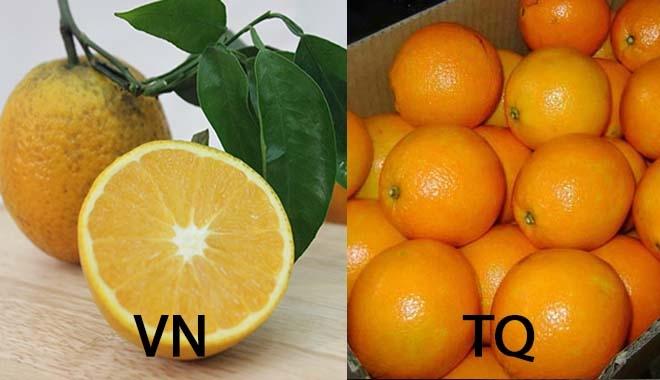 Cách nhận dạng 10 loại trái cây tiêm thuốc tăng trưởng đến từ Trung Quốc và trái cây sạch ở Việt Nam 2