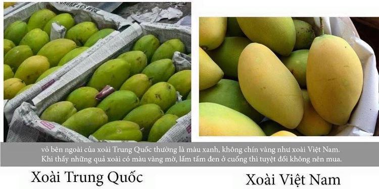 Cách nhận dạng 10 loại trái cây tiêm thuốc tăng trưởng đến từ Trung Quốc và trái cây sạch ở Việt Nam 9