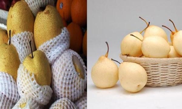 Cách nhận dạng 10 loại trái cây tiêm thuốc tăng trưởng đến từ Trung Quốc và trái cây sạch ở Việt Nam 4