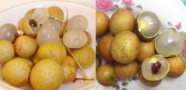 Cách nhận dạng 10 loại trái cây tiêm thuốc tăng trưởng đến từ Trung Quốc và trái cây sạch ở Việt Nam 10