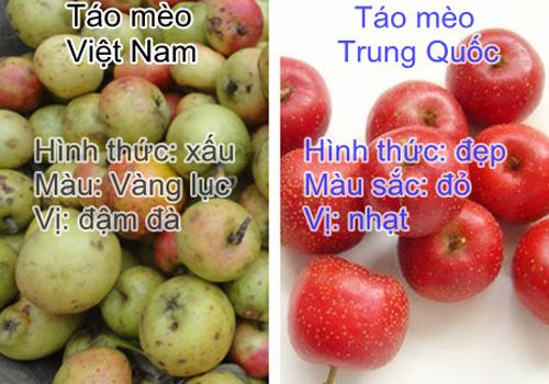 Cách nhận dạng 10 loại trái cây tiêm thuốc tăng trưởng đến từ Trung Quốc và trái cây sạch ở Việt Nam 7