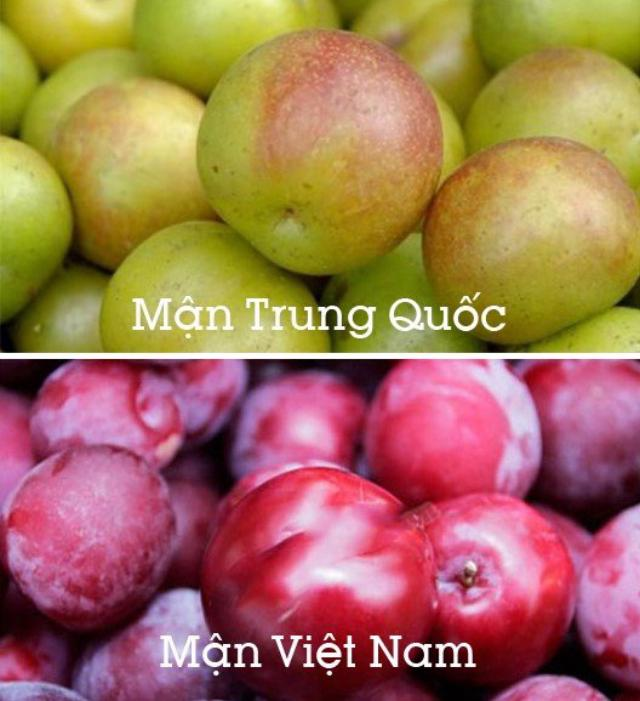 Cách nhận dạng 10 loại trái cây tiêm thuốc tăng trưởng đến từ Trung Quốc và trái cây sạch ở Việt Nam 8