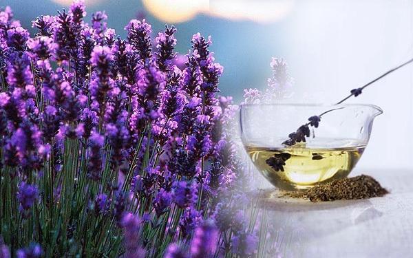Top 10 công dụng tuyệt vời của tinh dầu oải hương về sức khỏe làm đẹp 10