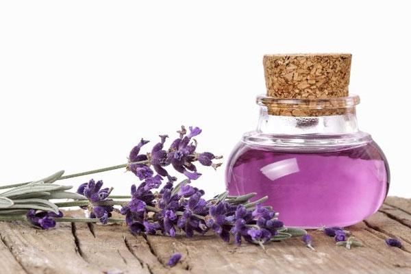 Top 10 công dụng tuyệt vời của tinh dầu oải hương về sức khỏe làm đẹp 5