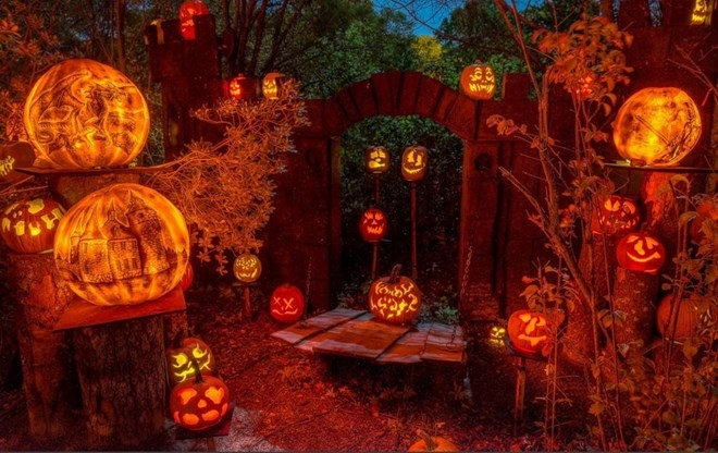 Bạn không nên bỏ lỡ 10 điều thú vị này trong ngày lễ Halloween 8