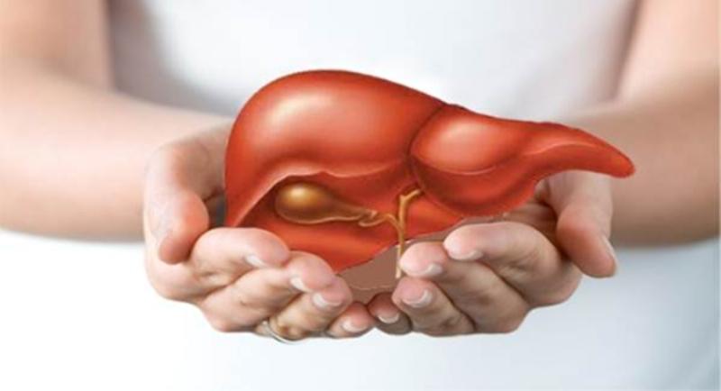 Bạn đã biết 10 sự thật thú vị này về cơ thể người? 3