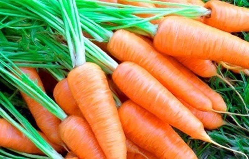 Top 10 loại thực phẩm làm trắng tại nhà dễ tìm, hiệu quả đến da ngăm đen cũng phải đầu hàng 5