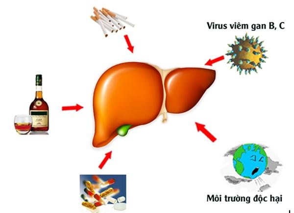 Top 10 loại virus gây bệnh nguy hiểm nhất hiện nay mà bạn cần biết 8