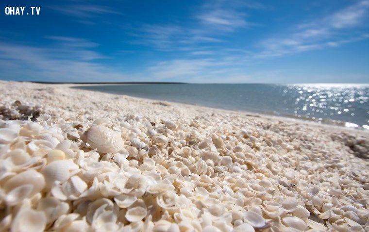 Khám phá 10 bãi biển kỳ lạ và tuyệt đẹp trên khắp thế giới 8