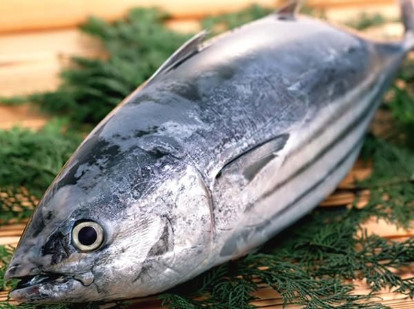 Tổng hợp 10 loài cá ngon nhất Việt Nam mà ai ăn cũng mê 9