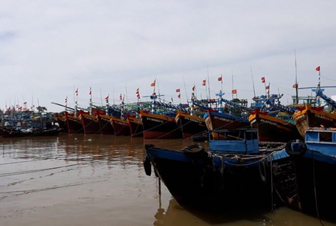 Bão số 12 tăng cấp, cách bờ biển Khánh Hòa-Ninh Thuận khoảng 400km 1