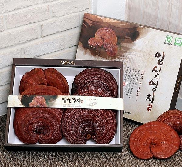 Top 10 cửa hàng nấm linh chi Hàn Quốc tại TPHCM uy tín, đảm bảo chất lượng và giá rẻ nhất 2