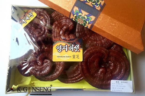 Top 10 cửa hàng nấm linh chi Hàn Quốc tại TPHCM uy tín, đảm bảo chất lượng và giá rẻ nhất 7